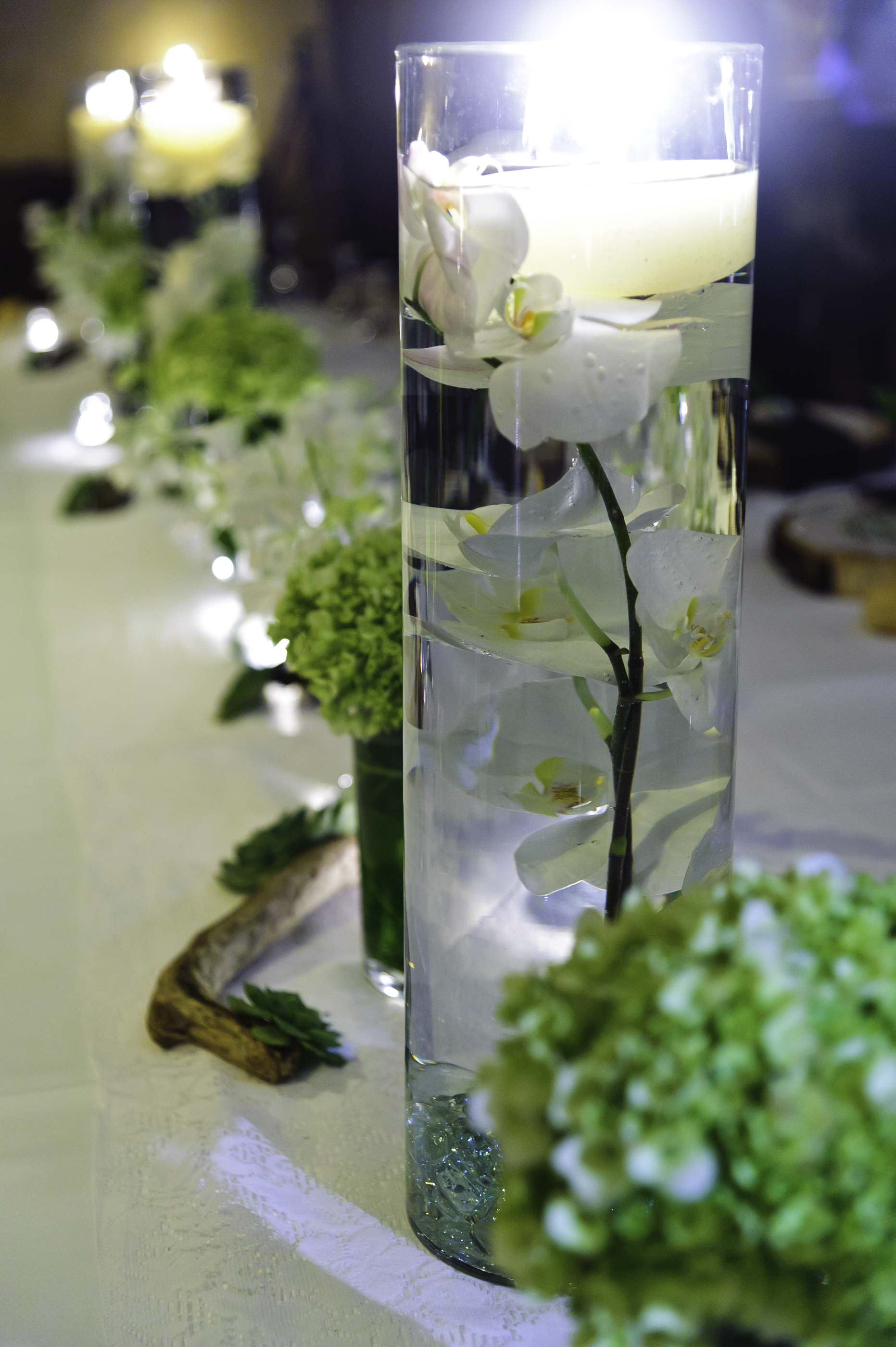 Real wedding shawn marie and thomas puerto viejo for Orchid decor