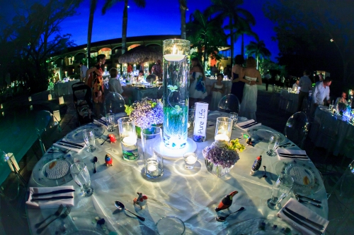 Laura and Shane's Wedding at the Hotel Diria in Tamarindo Gunacaste, Costa Rica