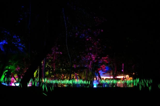 neon wedding reception, neon field wedding, beach wedding