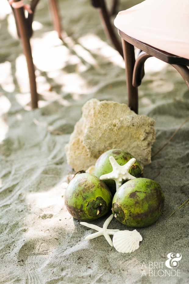 beach decor, beach wedding decor, coconuts and starfish