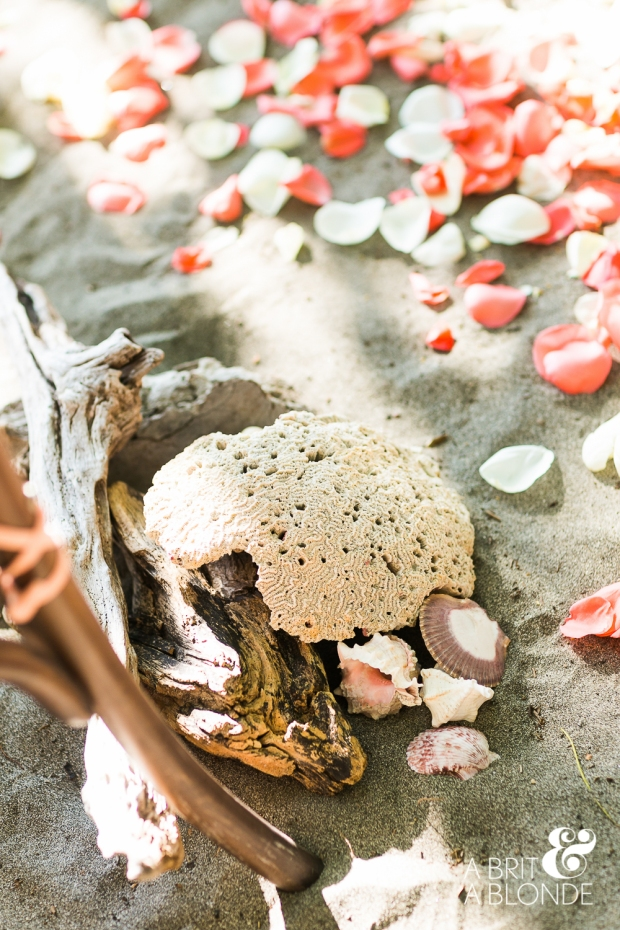 beach decor, beach wedding decor, seashell and rose petals